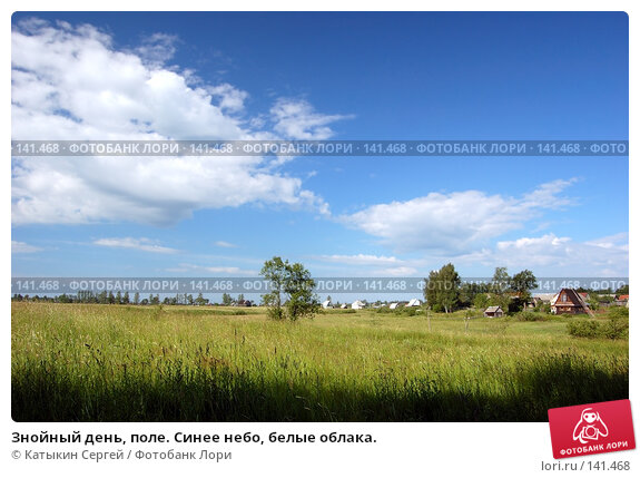Купить «Знойный день, поле. Синее небо, белые облака.», фото № 141468, снято 24 июня 2007 г. (c) Катыкин Сергей / Фотобанк Лори