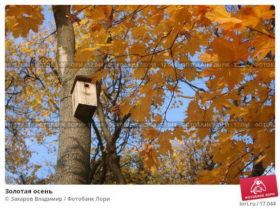 Золотая осень, фото № 17044, снято 30 сентября 2005 г. (c) Захаров Владимир / Фотобанк Лори