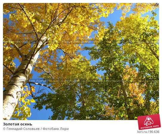 Золотая осень, фото № 90636, снято 29 сентября 2007 г. (c) Геннадий Соловьев / Фотобанк Лори