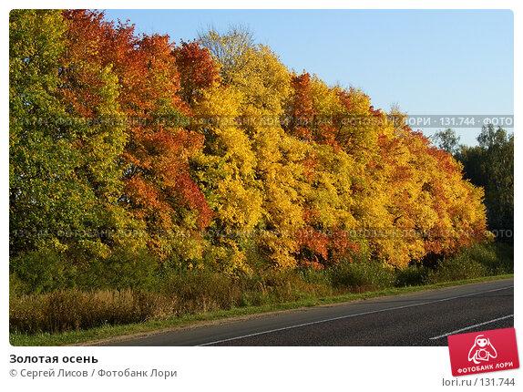 Золотая осень, фото № 131744, снято 24 сентября 2006 г. (c) Сергей Лисов / Фотобанк Лори