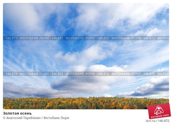 Купить «Золотая осень», фото № 140872, снято 29 сентября 2007 г. (c) Анатолий Теребенин / Фотобанк Лори