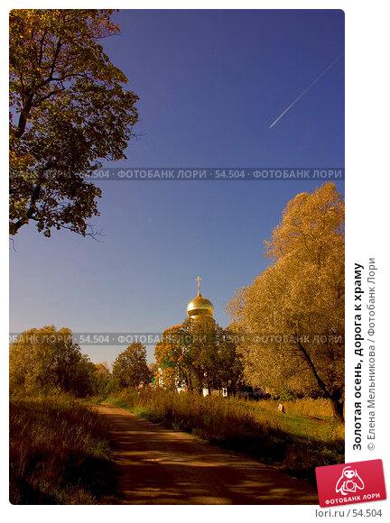 Купить «Золотая осень, дорога к храму», фото № 54504, снято 21 ноября 2017 г. (c) Елена Мельникова / Фотобанк Лори