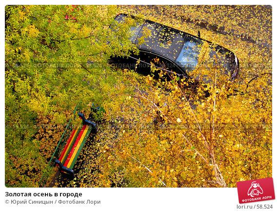 Купить «Золотая осень в городе», фото № 58524, снято 24 октября 2004 г. (c) Юрий Синицын / Фотобанк Лори