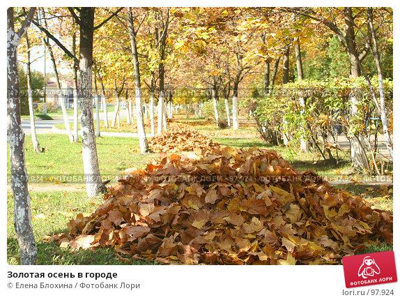 Золотая осень в городе, фото № 97924, снято 1 октября 2007 г. (c) Елена Блохина / Фотобанк Лори