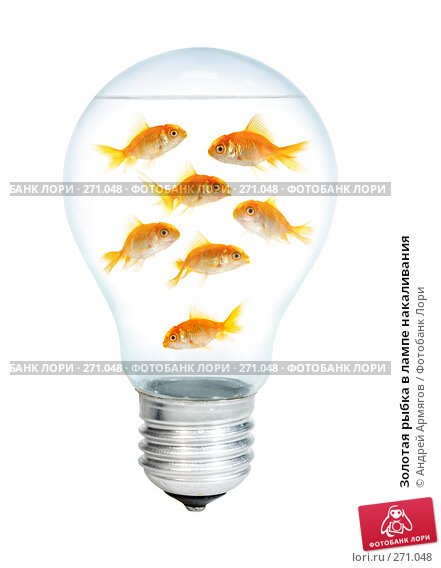 Золотая рыбка в лампе накаливания, фото № 271048, снято 24 октября 2016 г. (c) Андрей Армягов / Фотобанк Лори