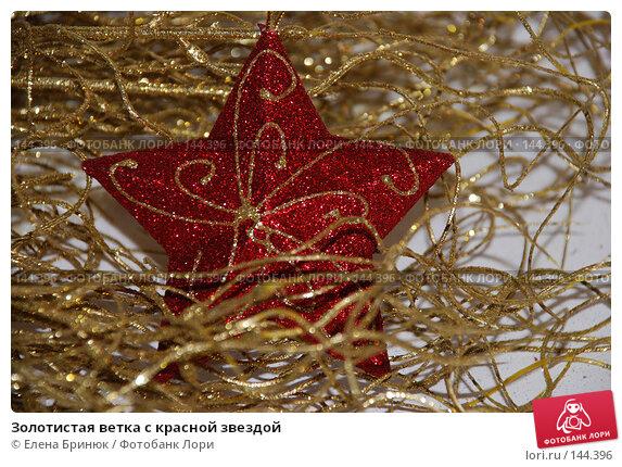 Золотистая ветка с красной звездой, фото № 144396, снято 10 декабря 2007 г. (c) Елена Бринюк / Фотобанк Лори