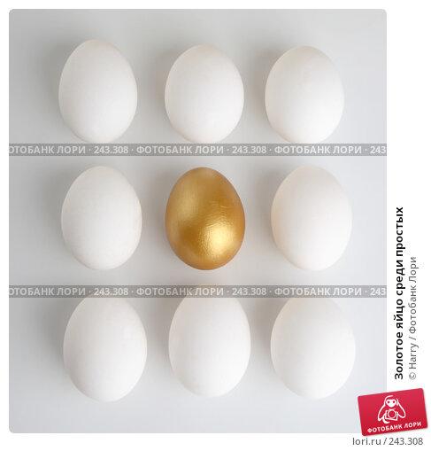 Золотое яйцо среди простых, фото № 243308, снято 3 октября 2007 г. (c) Harry / Фотобанк Лори