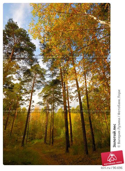 Золотой лес, фото № 90696, снято 22 сентября 2007 г. (c) Валерия Потапова / Фотобанк Лори