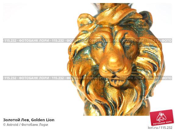 Золотой Лев, Golden Lion, фото № 115232, снято 26 октября 2007 г. (c) Astroid / Фотобанк Лори