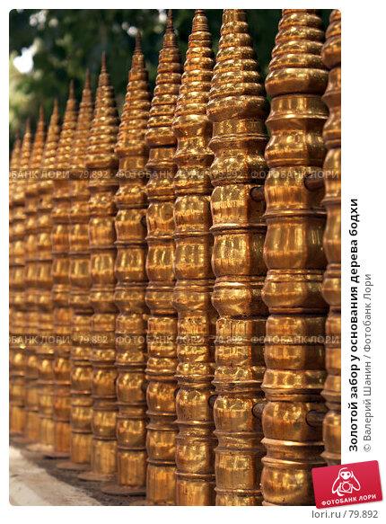 Золотой забор у основания дерева бодхи, фото № 79892, снято 16 июня 2007 г. (c) Валерий Шанин / Фотобанк Лори