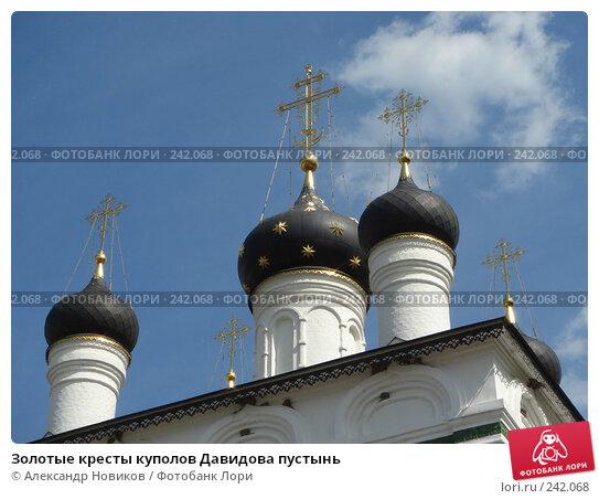 Золотые кресты куполов Давидова пустынь, фото № 242068, снято 9 июня 2007 г. (c) Александр Новиков / Фотобанк Лори