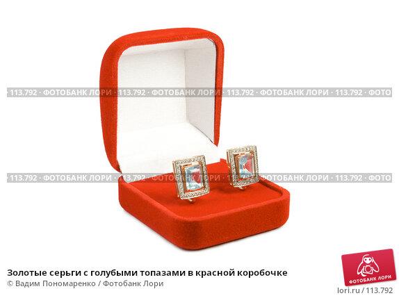 Золотые серьги с голубыми топазами в красной коробочке, фото № 113792, снято 3 ноября 2007 г. (c) Вадим Пономаренко / Фотобанк Лори