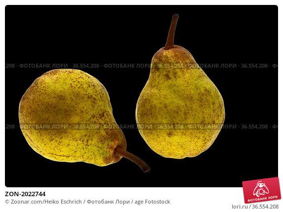 ZON-2022744. Стоковое фото, фотограф Zoonar.com/Heiko Eschrich / age Fotostock / Фотобанк Лори